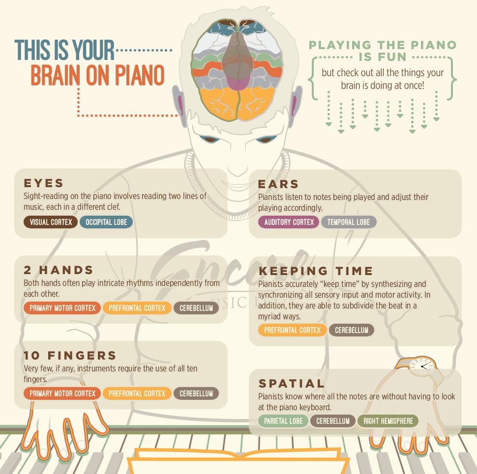 تدریس خصوصی پیانو وتئوری موسیقی ، آماده همکاری با خوانندگان در زمینه آهنگسازی، تنظیم ترانه و تولید آلبوم موسیقی